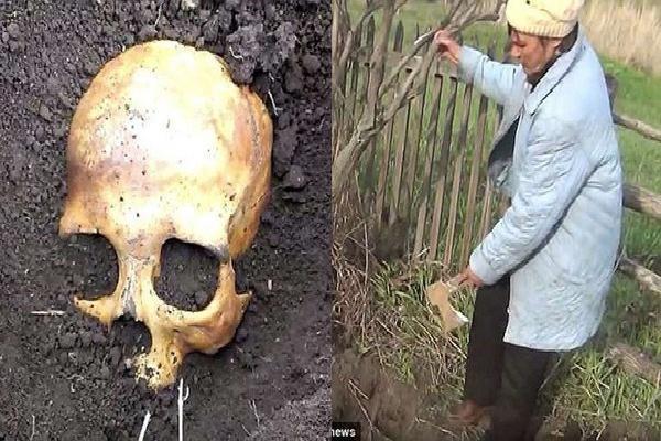 Đào được hộp sọ khi đang làm vườn, người nông dân Nga sợ mất mật khi vợ bảo 'Chồng cũ em đấy, chôn lại đi anh'