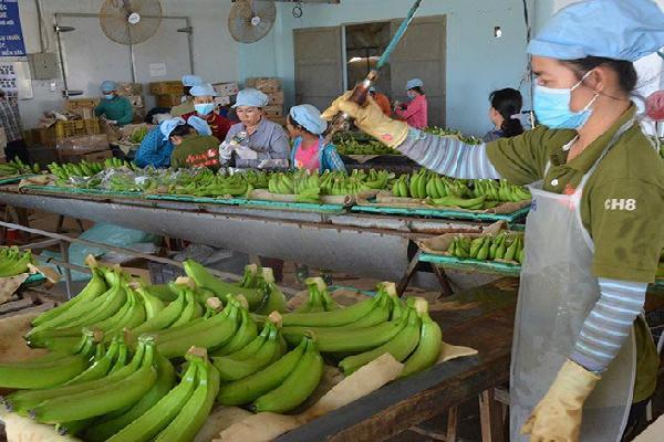 Mỹ-Trung ăn miếng trả miếng: Hàng Việt bị vạ lây?