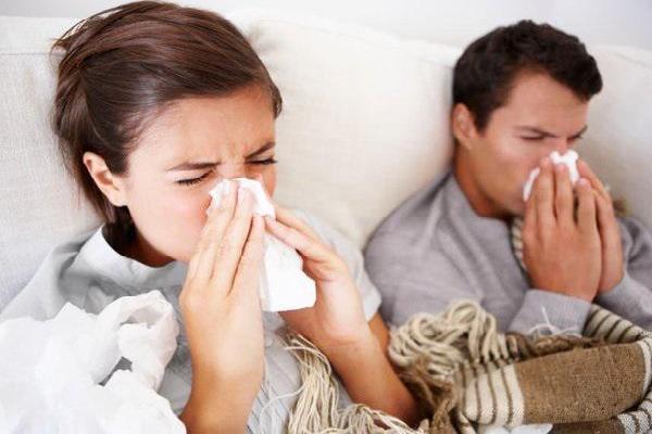 Cúm A/H1N1 có thể sống trong bể bơi... 4 ngày nhưng phòng được nhờ tinh dầu tràm