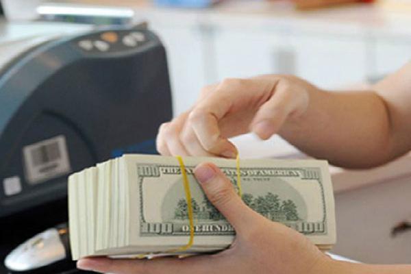 Đôla tự do và ngân hàng bật tăng