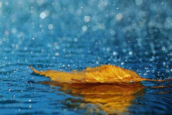 'Khúc mưa' - lời tự tình tháng 6