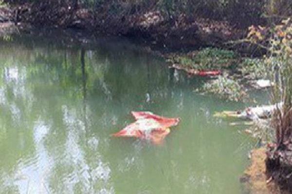 2 mẹ con đuối nước thương tâm dưới ao cá