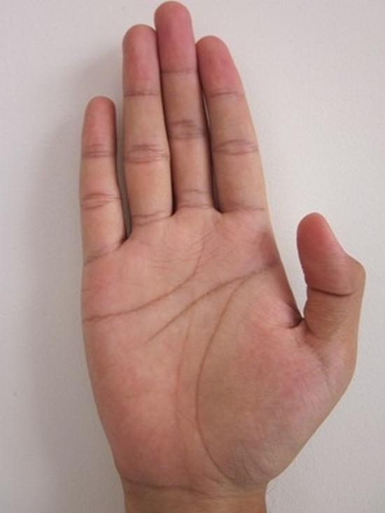 Bàn tay của chủ nhân có vận mệnh tài phú và sự nghiệp thành công - Ảnh 4.