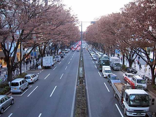 Giao thông ở Nhật Bản rất nghiêm chỉnh