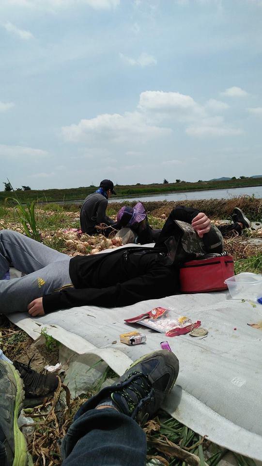 Dễ dàng bắt gặp hình ảnh những du học sinh Việt Nam đang làm thêm tại các trang trại nông sản ở Nhật