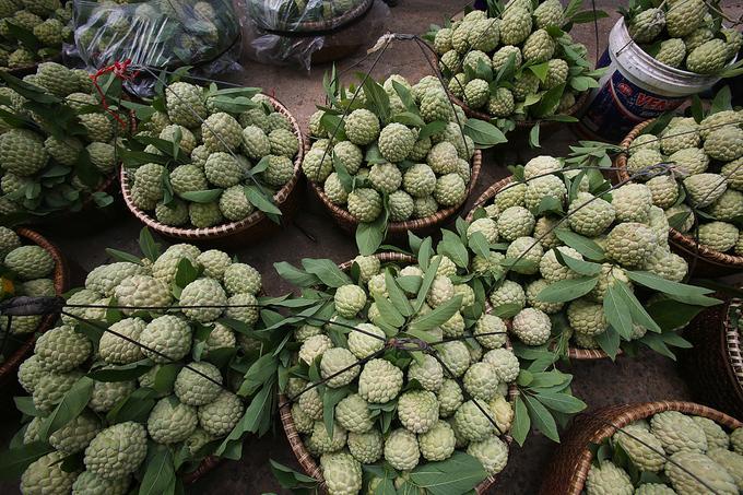 Các thúng na được xếp hàng tập kết tại chợ. Mỗi gánh na nặng từ 25 đến 35 kg được bán vo.