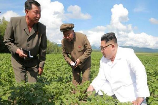 Kim Jong-un có thể ở trang trại khoai khi Ngoại trưởng Mỹ đến thăm