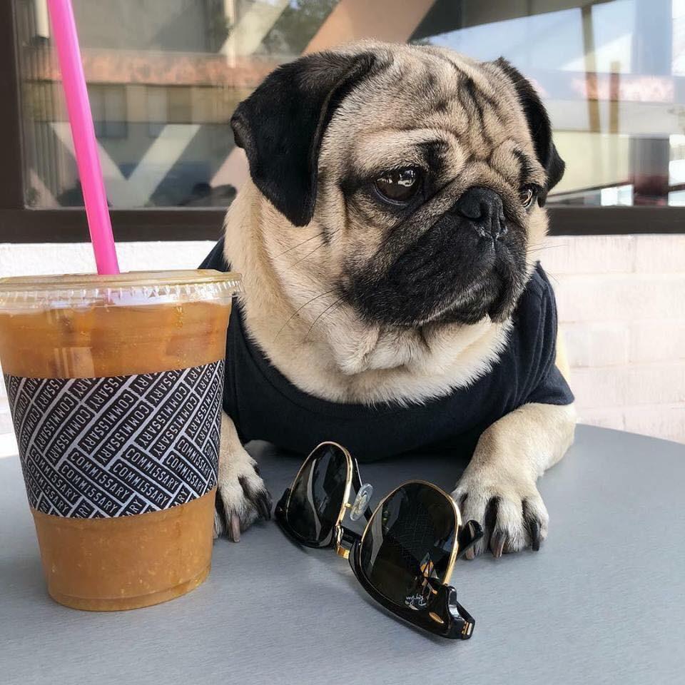 Đi uống cafe sang chảnh với sen tí, kính kia là của anh đấy nhé!