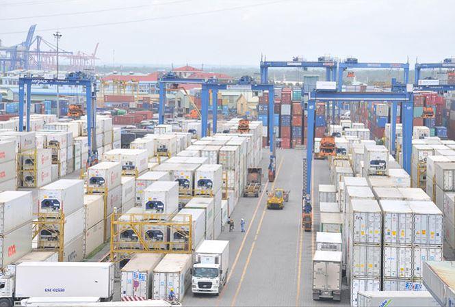 Cảng Cát Lái đang ùn tắc nghiêm trọng vì hơn 3.500 container phế liệu chưa được giải phóng. Ảnh: Tuấn Nguyễn.