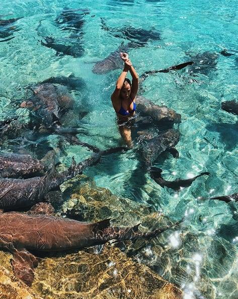 Lội xuống biển chụp ảnh, cô người mẫu hết hồn khi bị cá mập cắn yêu một nhát - Ảnh 6.