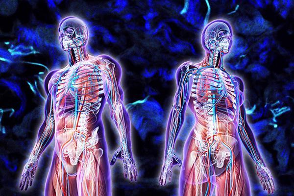 20 sự thật đáng kinh ngạc về cơ thể con người