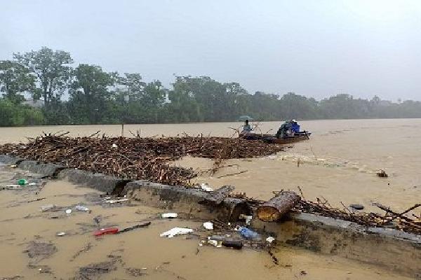 Hà Tĩnh: Bất chấp nước lũ nguy hiểm, người dân vẫn trục vớt củi