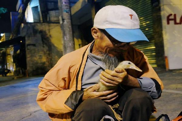 Câu chuyện đáng yêu về chú vịt con lon ton theo sau ông lão vé số ở Sài Gòn: 'Từ ngày con 'quỷ sứ' này chạy theo, ông thấy vui hơn nhiều'