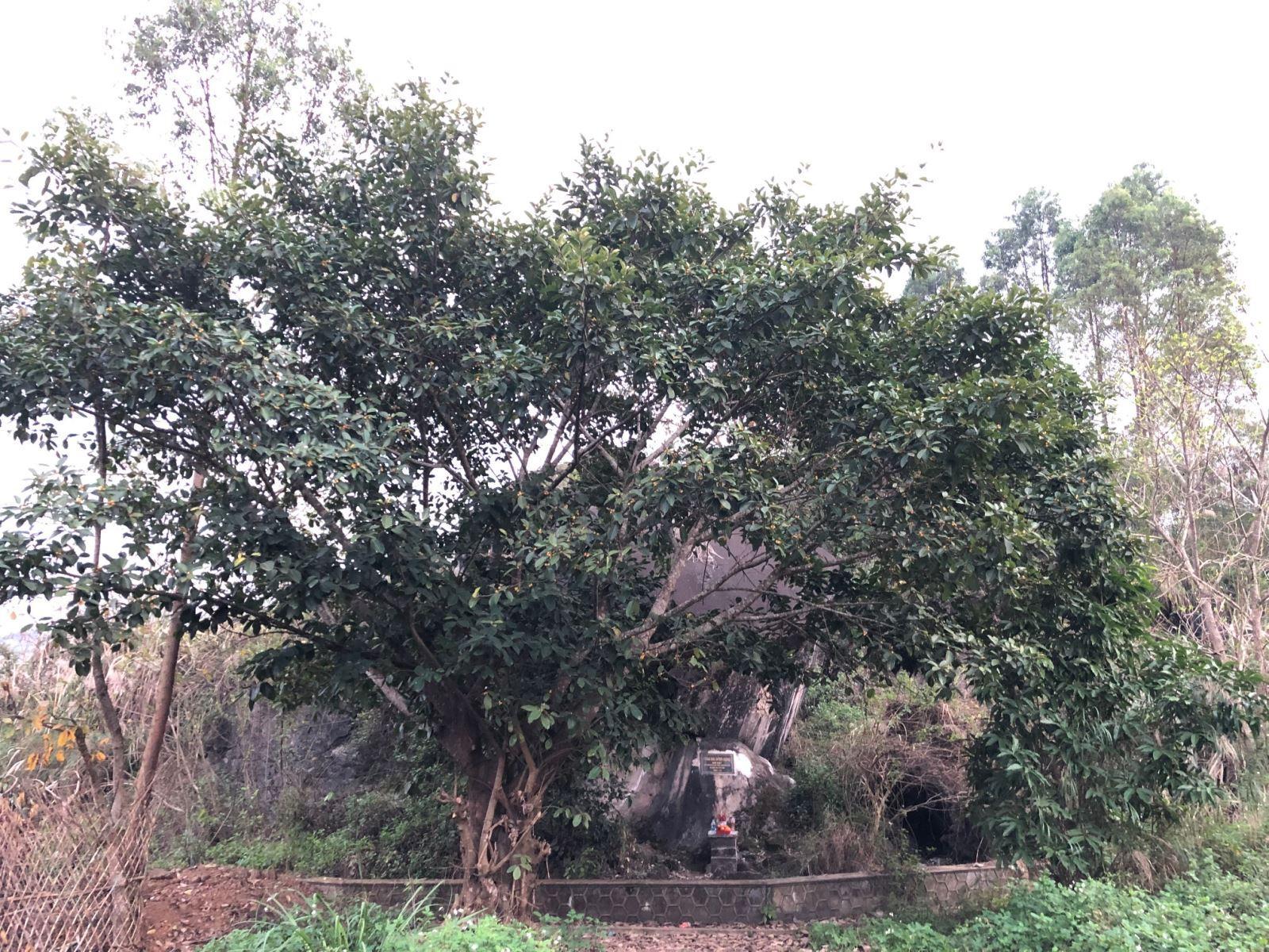 Am thờ tại Pháo đài Đồng Đăng.