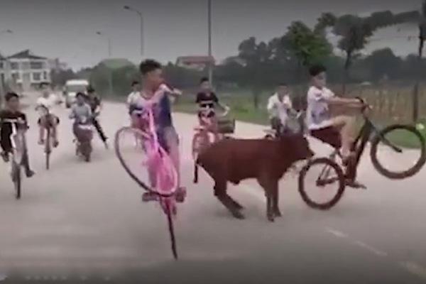 Nhóm thiếu niên đi xe đạp dàn hàng, bốc đầu xe