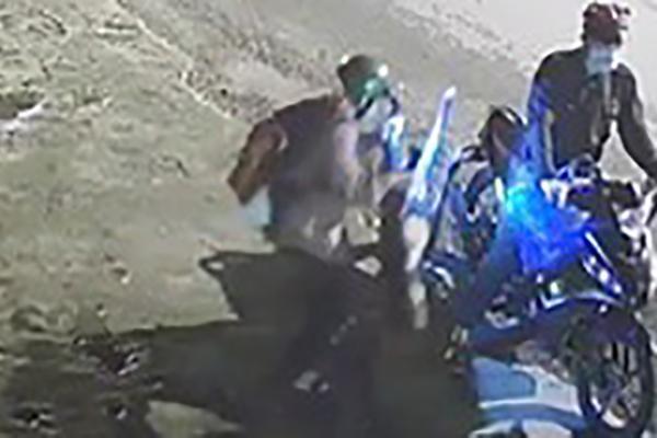 Video: Rùng mình cảnh chó pitbull 40kg bị 'cẩu tặc' chích điện, bồng đi trong chớp mắt