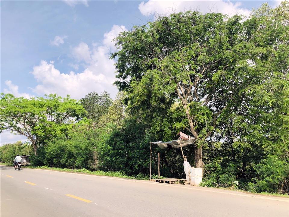 Một khu đất tại huyện Vĩnh Lợi, Bạc Liêu đã được tách thửa (ảnh Nhật Hồ)