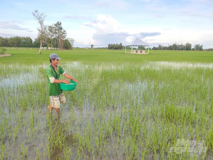Ngành Nông nghiệp tỉnh Bạc Liêu cũng đang khẩn trương tổng hợp số liệu thiệt hại của bà con nông dân trong tỉnh để sớm trình UBND tỉnh có hướng hỗ trợ giúp cho bà con nông dân ổn định sản xuất sau ảnh hưởng của mưa bão và triều cường. Ảnh: TL.