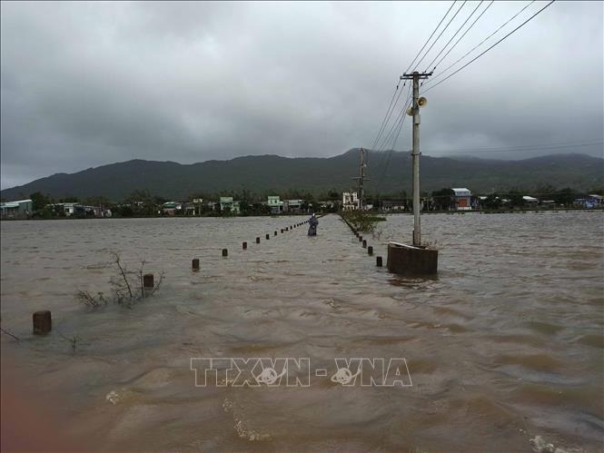 Nhiều tuyến đường và khu dân cư xã Cát Chánh, huyện Phù Cát (Bình Định) bị ngập sâu từ sáng 10/11 khiến các phương tiện và người dân không đi lại được. Ảnh: Phạm Kha/TTXVN