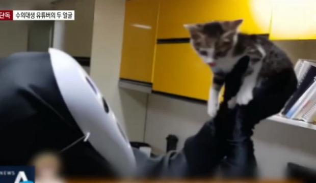 Youtuber Hàn Quốc Gabsu Park từng bị lên án vì hành vi ngược đãi động vật.