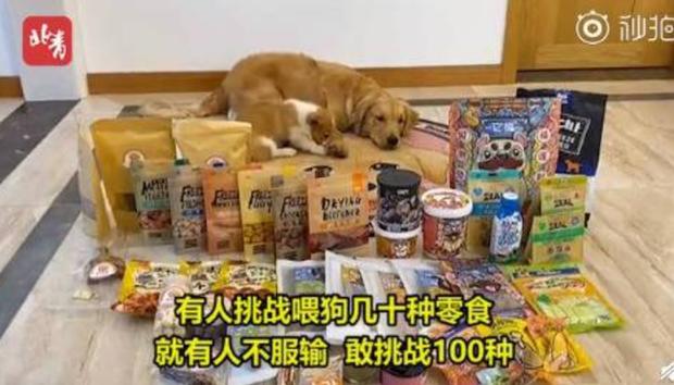 Phẫn nộ với những hành vi ngược đãi động vật để câu view: Bỏ đói mèo con để trông đáng yêu hơn, ép chó ăn ớt đến mức rơi nước mắt - Ảnh 3.