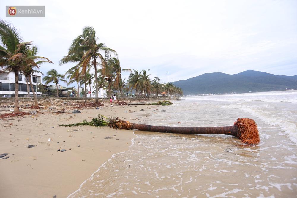 Ảnh: Cận cảnh bãi biển đẹp nhất hành tinh tan hoang, xơ xác sau bão số 13 - Ảnh 1.