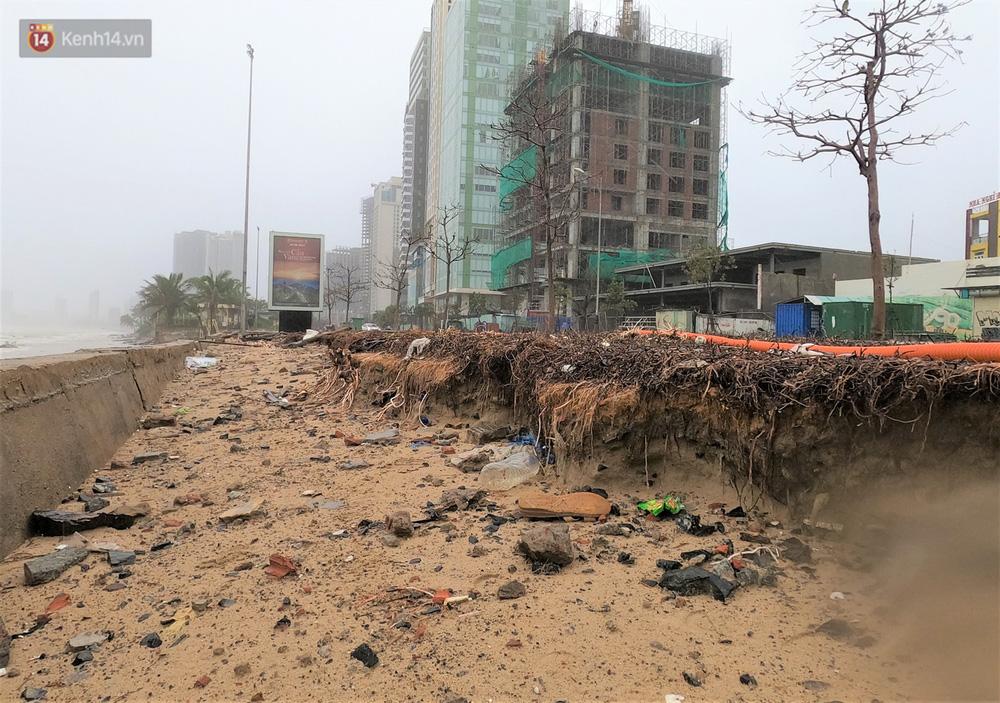 Ảnh: Cận cảnh bãi biển đẹp nhất hành tinh tan hoang, xơ xác sau bão số 13 - Ảnh 12.