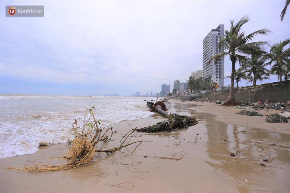 Ảnh: Cận cảnh bãi biển đẹp nhất hành tinh tan hoang, xơ xác sau bão số 13 - Ảnh 14.