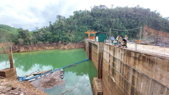 Lòng hồ chưa dọn sạch nên cây bị ngập khi nước lên cao trình 115m.