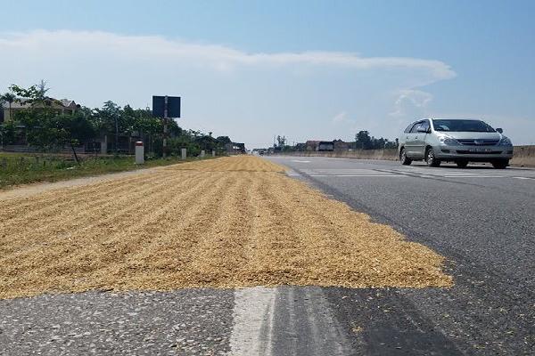 Hà Tĩnh: Nghiêm cấm người dân phơi lúa trên quốc lộ
