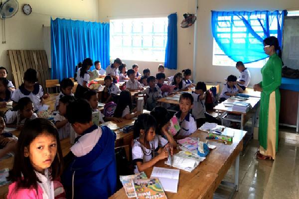 Hơn 260 giáo viên ở Cà Mau có thể bị mất việc
