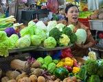 Góc khuất rau Trung Quốc nhập về Đà Lạt