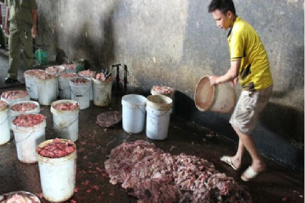 Kinh hãi gom mỡ, nội tạng bẩn nấu thành mỡ bán ra thị trường